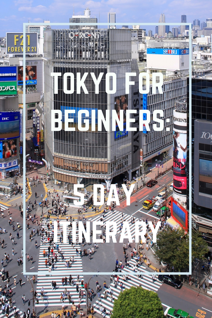 what to do in tokyo japan guide