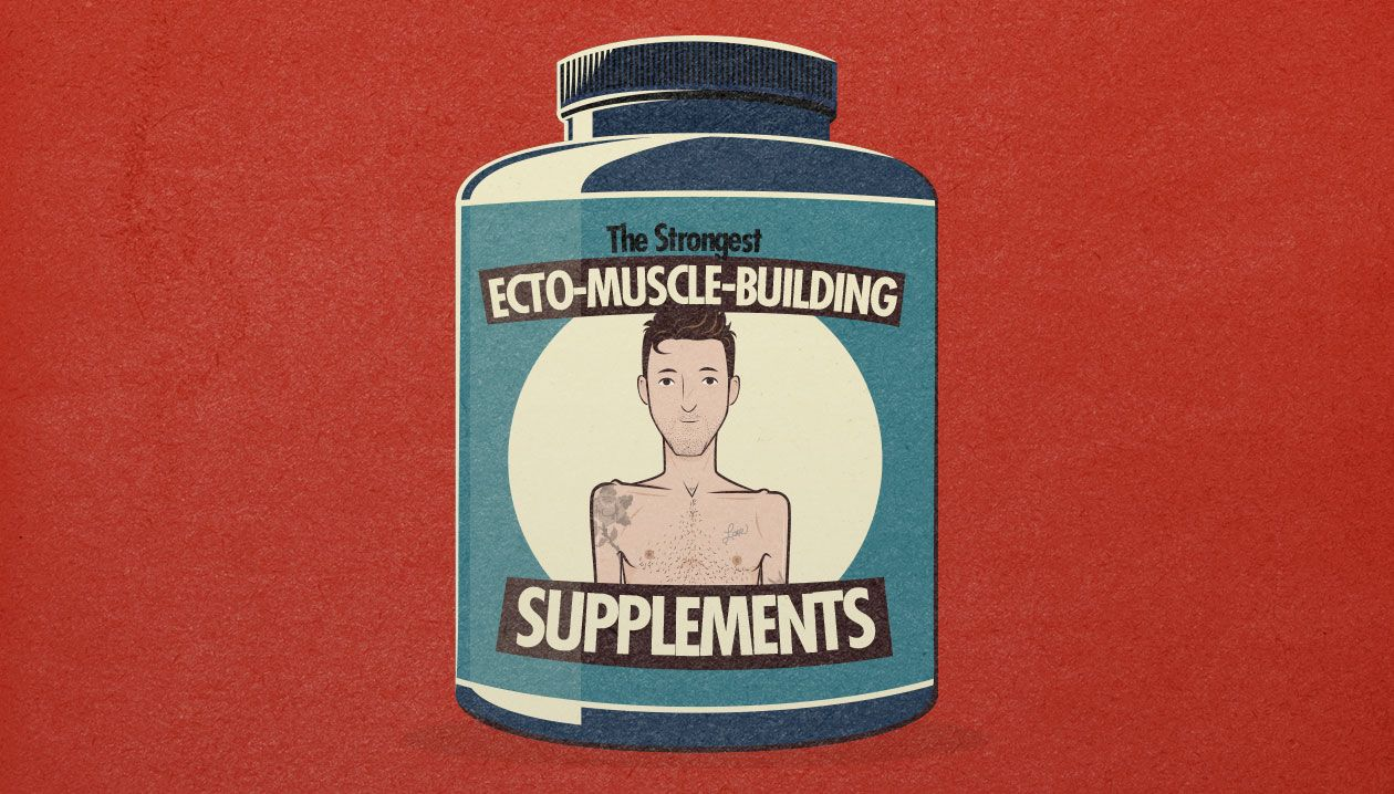supplement guide for building muscle